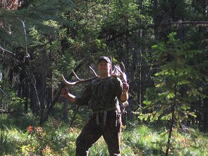 chadd bull
